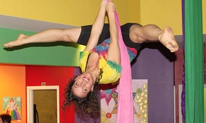 Learning2Fly: Two Aerial Fitness Classes for One or Two People at Learning2Fly (Up to 44% Off)