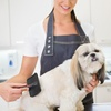 Up to 46% Off Pet Grooming