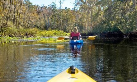 Four-Hour Kayaking Trip on White River for Two, Four, or Six from River Guide Kayaks (Up to 52% Off)