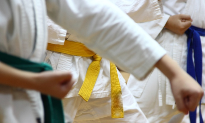 Olympic Karate Studio - Highview: $60 for $120 Worth of Martial Arts — Olympic Karate