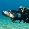 Up to 71% Off PADI Course at Beach Cities Scuba