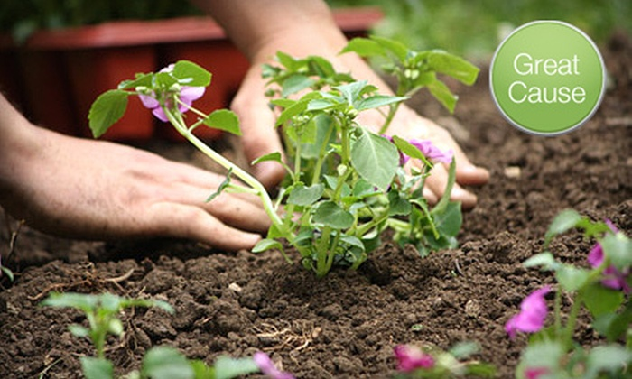 The Generous Garden Project - Greenville: $10 Donation to Help Plant 4 Acres of Vegetables
