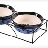 $16 for a Ceramic Pet Feeder with Metal Stand