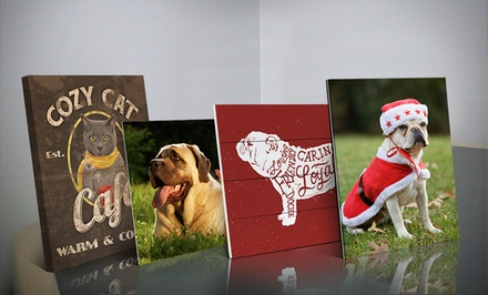 Customized Pet Pictures