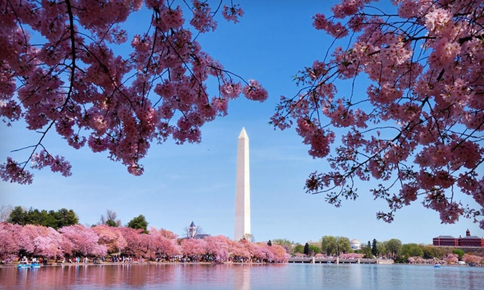 null - Washington DC: Stay at Washington Suites Alexandria in Alexandria, VA, with Dates Through May