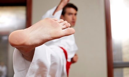 One or Two Months of Unlimited Martial Arts Classes at USA Karate (Up to 62% Off)