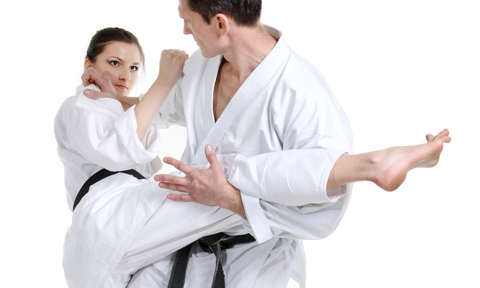D.K. Taekwondo - Western - D.K. Taekwondo - Western: 6 or 12 Tae Kwon Do Classes with T-shirt and Belt at D.K. Taekwondo - Western (Up to 82% Off)