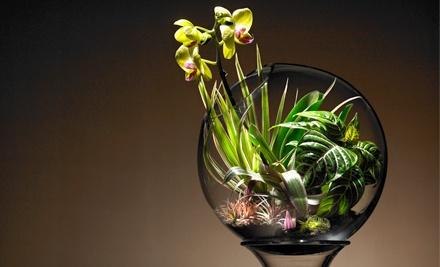 2-Hour Make a Terrarium Class for 1 (a $160 value) - Bay Area Glass Institute in San Jose