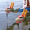 78% Off Dragon Boat Experiences