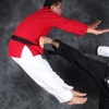 Up to 78% Off Martial Arts in Grosse Pointe Woods