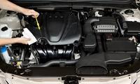 Professionelle Auto-Aufbereitung inkl. Reinigung des Motorblocks und Hochglanz-Politur bei AP Optik (55% sparen*)