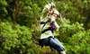 null - Big Bear: $55 for a Three-Line Zipline Tour for Two at Cedar Lake Camp ($110 Value)