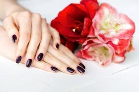 Sugar Tips Nails by Senia: Gel Manicure, Rock Star Toenail Design Application, or Both at Sugar Tips Nails by Senia (Up to 54% Off)