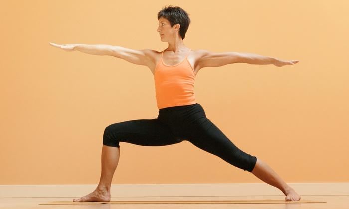 Breathing Dragon Hot Yoga - Princeton-Montgomery: 10 Bikram Yoga Classes or One Month of Unlimited Bikram Yoga at Breathing Dragon Hot Yoga (Up to 77% Off)