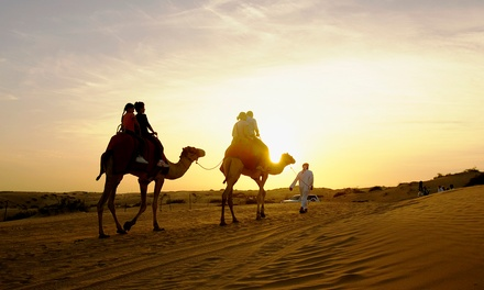 Morocco: Choice of Tours With Transportation*