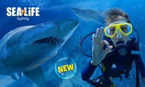SEA LIFE Sydney Aquarium: $299 for a Shark Dive Xtreme for One Person at SEA LIFE Sydney Aquarium