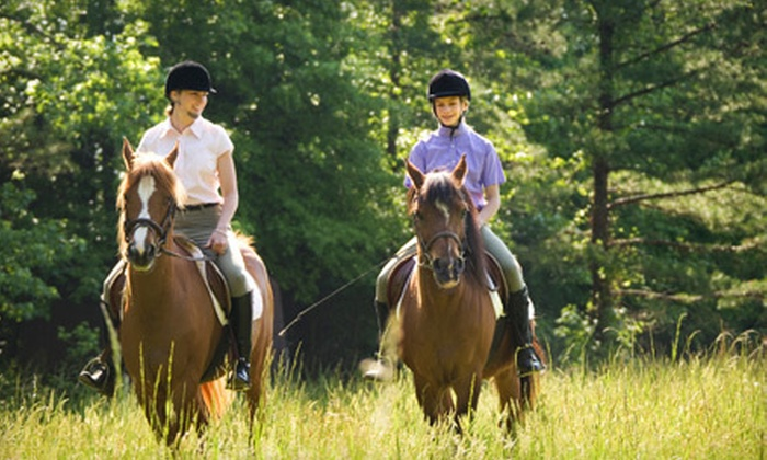 Dude's Ranch Equine Rescue Center - Acton: $55 for Choice of Horseback Trail Ride or Lesson at Dude's Ranch Equine Rescue Center in Acton (Up to $130 Value)