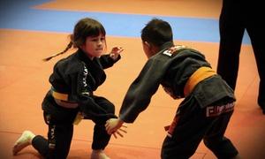 Claudio França Brazilian Jiu-Jitsu: Jiu-Jitsu or Fitness Kickboxing Classes at Claudio França Brazilian Jiu-Jitsu (Up to 70% Off). Three Options Available.