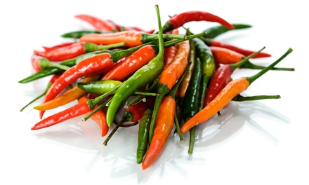 VIVA New Mexico Chile Festival for Two or Four at Wagner's Farmland Experience on September 5–7 (Up to 45% Off)