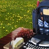 Blue Picnic Backpack with an Insulated Cooler and Picnic Essentials