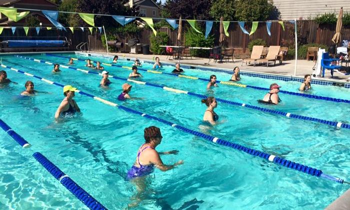 Davis Swim and Fitness - South Davis: One-Month Membership or Two-Month Membership with Fitness Assessment at Davis Swim and Fitness (Up to 53% Off)
