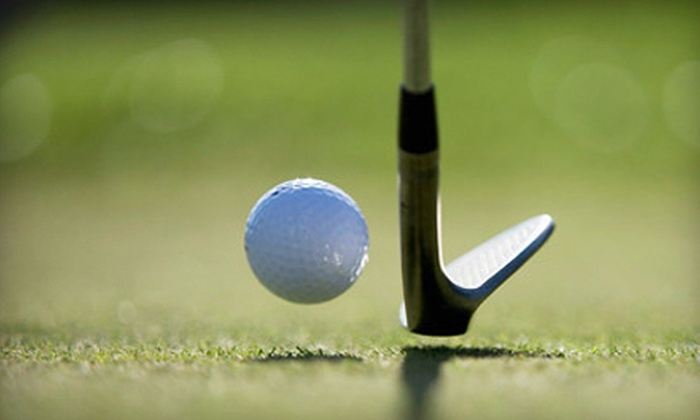 The Daniel Ray Golf Academy - Skybrook: One-Hour, Private Golf Lesson for One or Two at The Daniel Ray Golf Academy (Up to 59% Off)