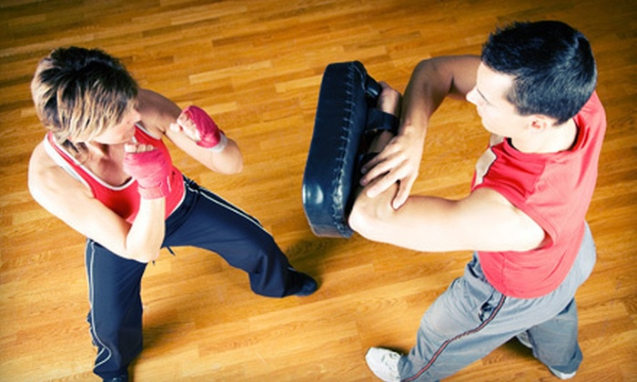 Elite Defense Systems - South Itasca: $10 Worth of Martial-Arts Classes