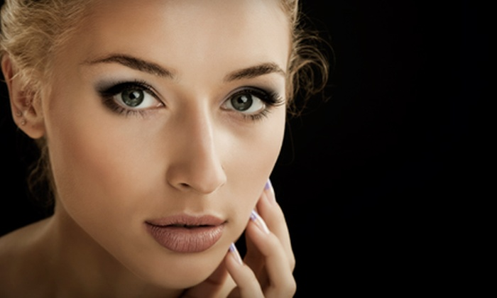 The Skin & Permanent Makeup Institute - Northwest Side: Permanent Top or Bottom Eyeliner or Permanent Eyebrow Makeup at The Skin & Permanent Makeup Institute