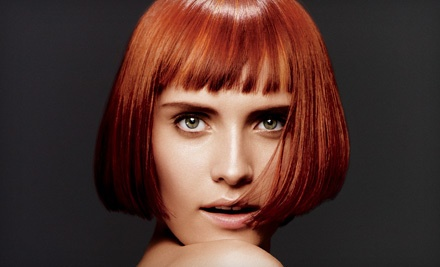 Haircut (a $45 value) and Aveda Botanical Hair Therapy (a $25 value; a $70 total value) - Karen Allen Aveda Salon & Spa in Riverside