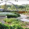 $10 for Amarillo Botanical Gardens Guided Tour