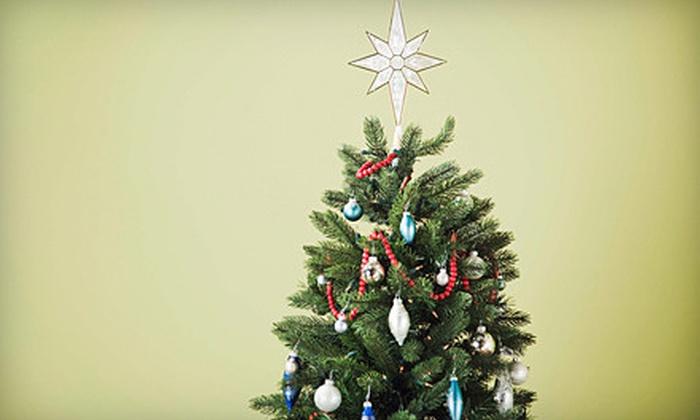 St. Charles Junk - O'Fallon: Christmas-Tree Removal or Junk-Removal Services from St. Charles Junk (Half Off)