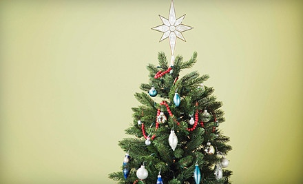 1 Live Christmas-Tree Pickup and Disposal (a $60 value) - St. Charles Junk in