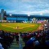Up to 64% Off Camden Riversharks Baseball