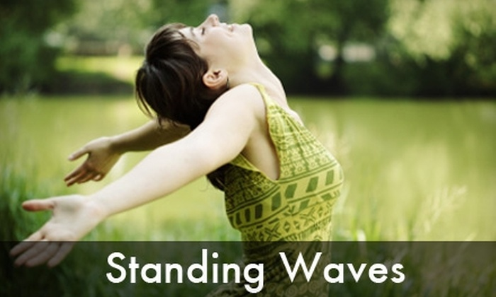 Standing Waves - Hoover: 60-Minute Massage or a Colon Hydrotherapy Treatment at Standing Waves. Choose Between Two Options.