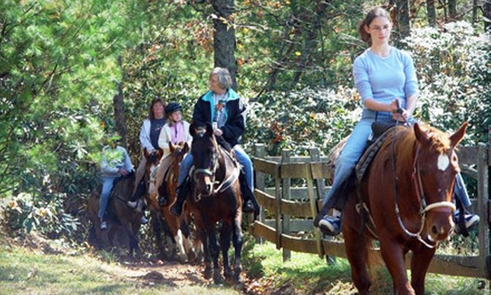 Five Oaks Riding Stables - Sevierville: $29 for a One-Hour Horseback Trail Ride for Two from Five Oaks Riding Stables in Sevierville ($59.98 Value)