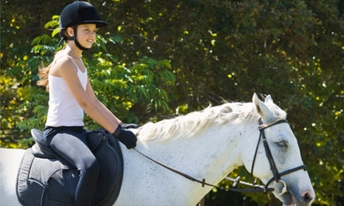 Fantasy Farms - Jupiter: $22 for a Beginner Riding Lesson ($45 Value) or $32 for an Intermediate Riding Lesson ($65 Value) at Fantasy Farms in Jupiter