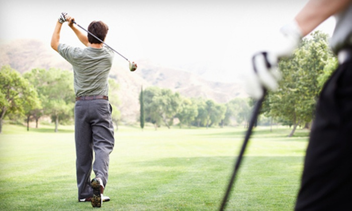 Mansfield Golf & Learning Center - Mansfield: One or Three Private One-Hour Golf Lessons at Mansfield Golf & Learning Center in Columbus (Up to 72% Off)