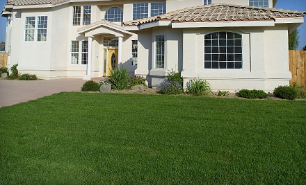 Lawn Aeration and Seeding for Up to 6000 Square Feet (up to a $130 value) - Bellaire Yard Care in Toledo