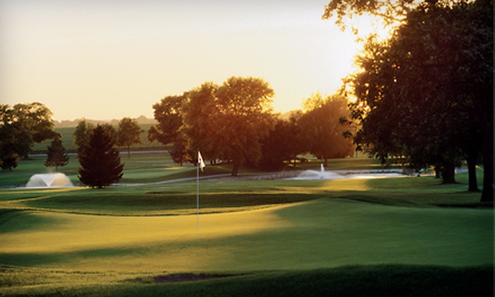 Lake Lawn Resort - Delavan: Golf Outing for Four or Golf Outing for Four with Fare and Drink Voucher at Lake Lawn Resort in Delavan