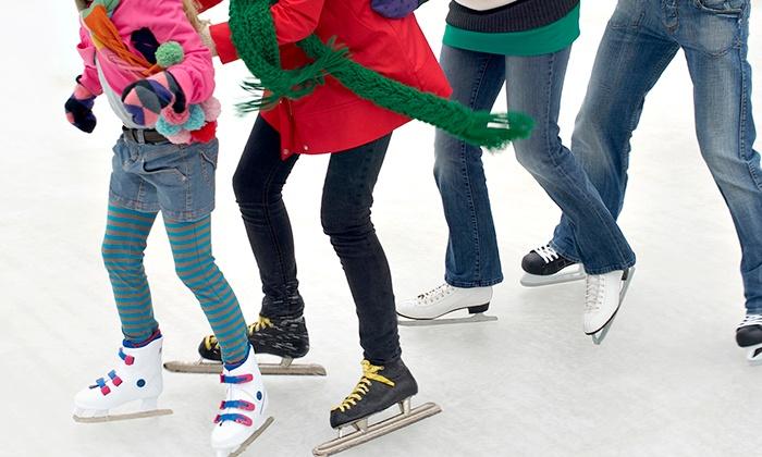Appleton Family Ice Center - Multiple Locations: Ice-Skating Package for Four, or a Birthday Party for Up to 10 at Appleton Family Ice Center (Up to 50% Off)