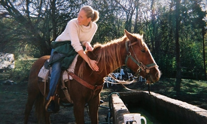 3 H Stables - Huntsville: $10 for a 60-Minute Scenic Horseback Lesson at 3 H Stables ($30 Value)