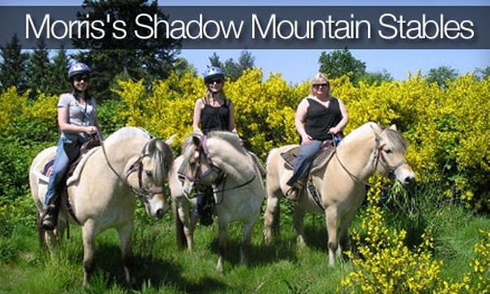 Morris's Shadow Mountain Stables - Lea Hill: $30 for a 90-Minute Trail Ride at Morris's Shadow Mountain Stables in Auburn ($65 Value)