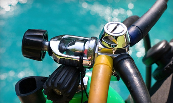 Upstate Scuba - Upstate Scuba LLC: Try Scuba Class or Open-Water Certification Course at Upstate Scuba in Clemson (Up to 63% Off)