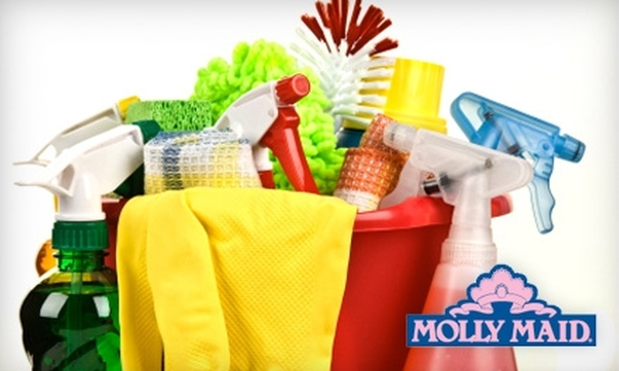 Molly Maid of North East Tampa - Meadow Point: $65 for Two Hours of Residential Cleaning Services from Molly Maid of North East Tampa ($150 Value)