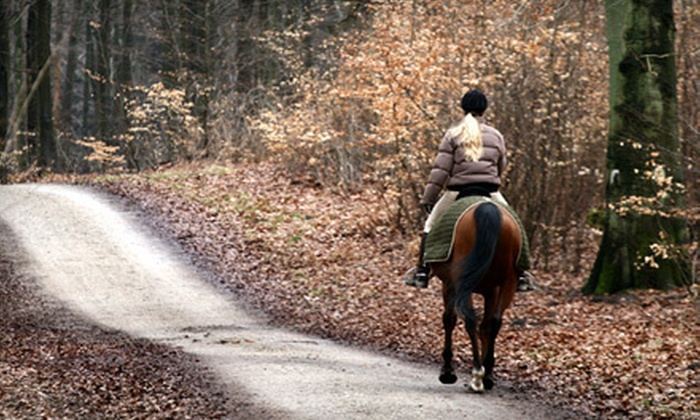 Hickory Creek Ranch - Spring Hill: Halloween Horseback Trail Ride for Two or Four from Hickory Creek Ranch (Up to 63% Off)