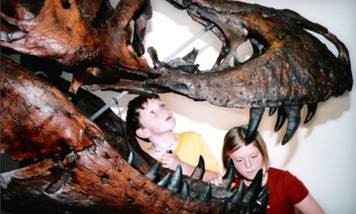 Morrison Natural History Museum - Denver: $20 for One-Year Family Membership to the Morrison Natural History Museum ($40 Value)