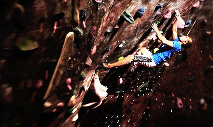 Vertical Ventures - Tampa: $25 for an Introduction to Belaying Class for Two and Rock Climbing at Vertical Ventures ($50 Value)