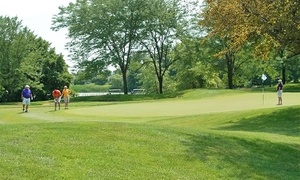 Orchard Valley Golf Course:  $45 for an 18-Hole Round of Golf for Two with Cart and Lunch at Orchard Valley Golf Course ($150 Value)