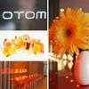Half Off Upscale Cuisine at Otom