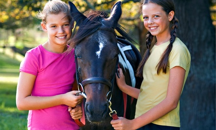 Birthday Party with Pony Rides at My Saddle Brook Farm (Up to 50% Off). Three Options Available.